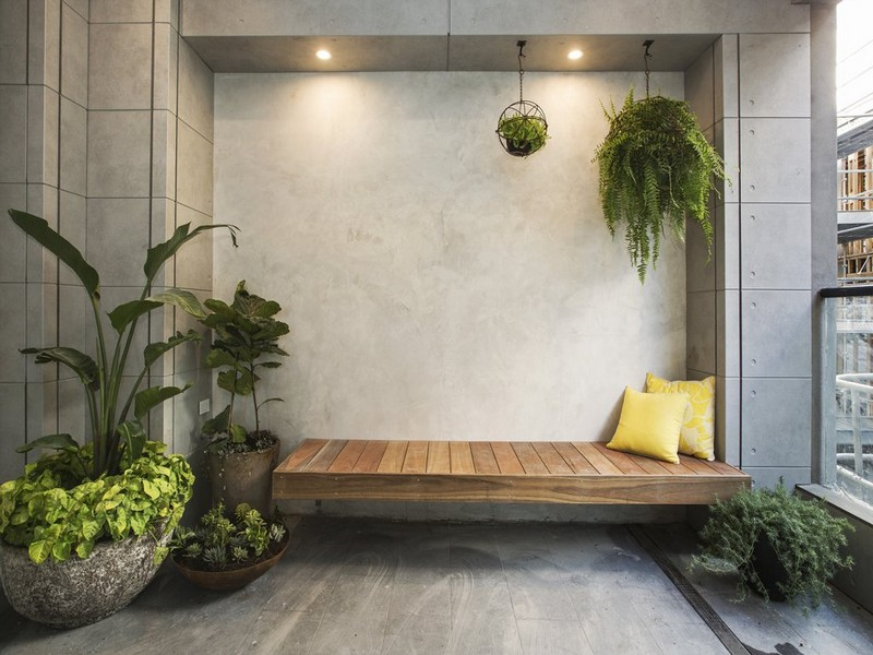 Best Plants To Keep Under Your Patio, Outdoor Patio Plants