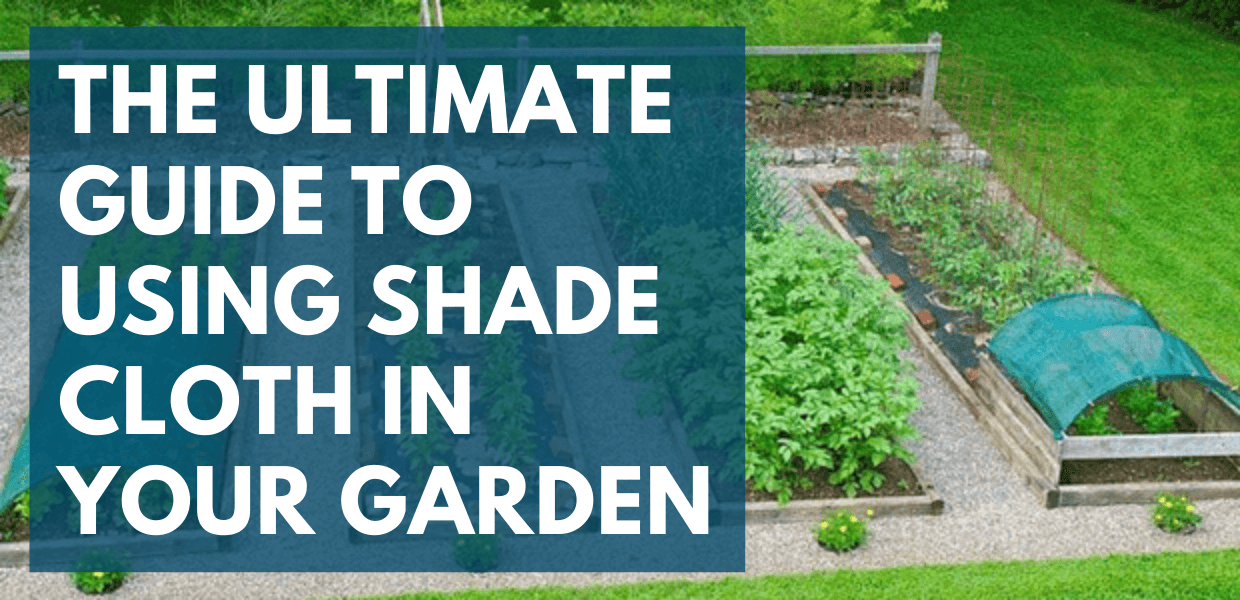 The Ultimate Guide to Using Shade Cloth in Your Garden in 2020