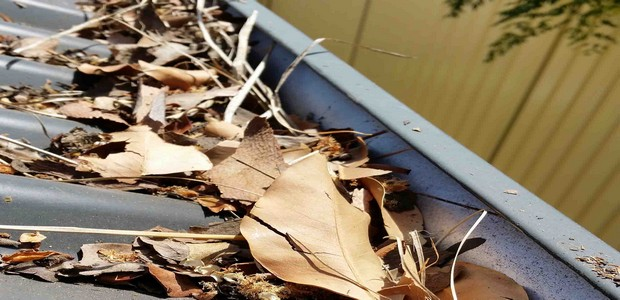 How to Clean your Gutters?